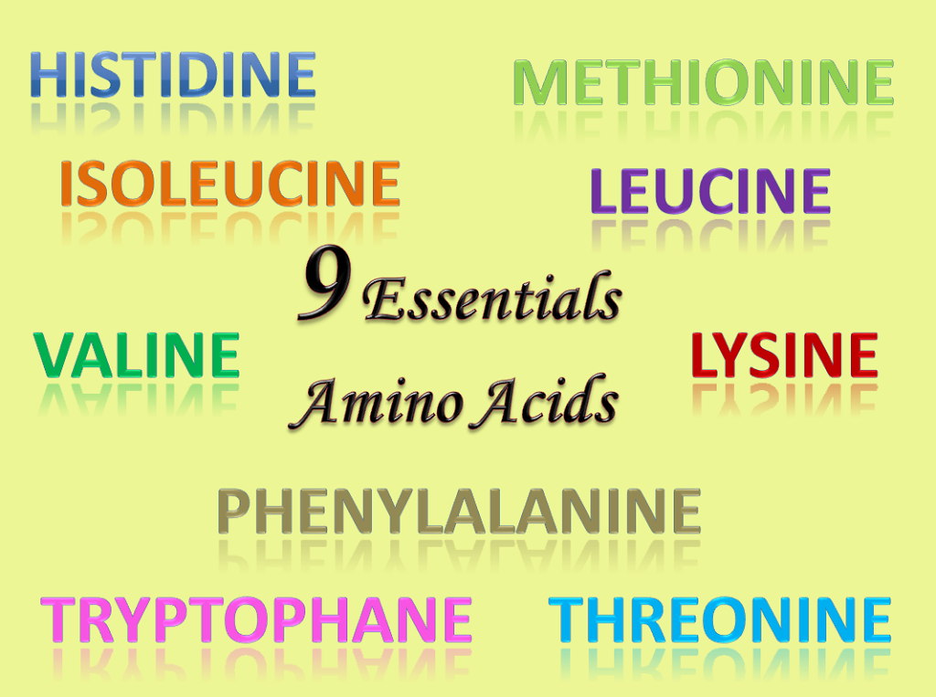 9-essentials-amino-acids