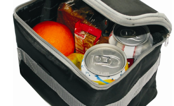 fridge_to_go_6_can_cooler_bag
