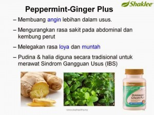 Manfaat Peppermint Ginger Plus