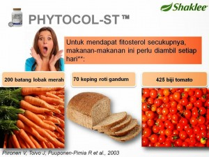 suplemen fitosterol
