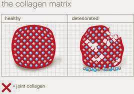 Rawat Sakit Sendi Dengan Collagen Powder