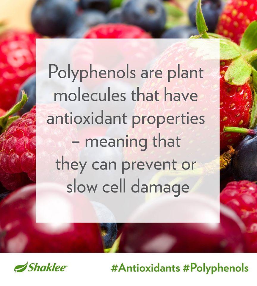 Polifenol adalah bahan kimia semulajadi terkandung di dalam tumbuhan