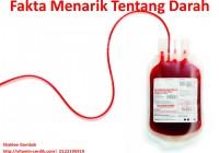 Fakta Menarik Tentang Darah