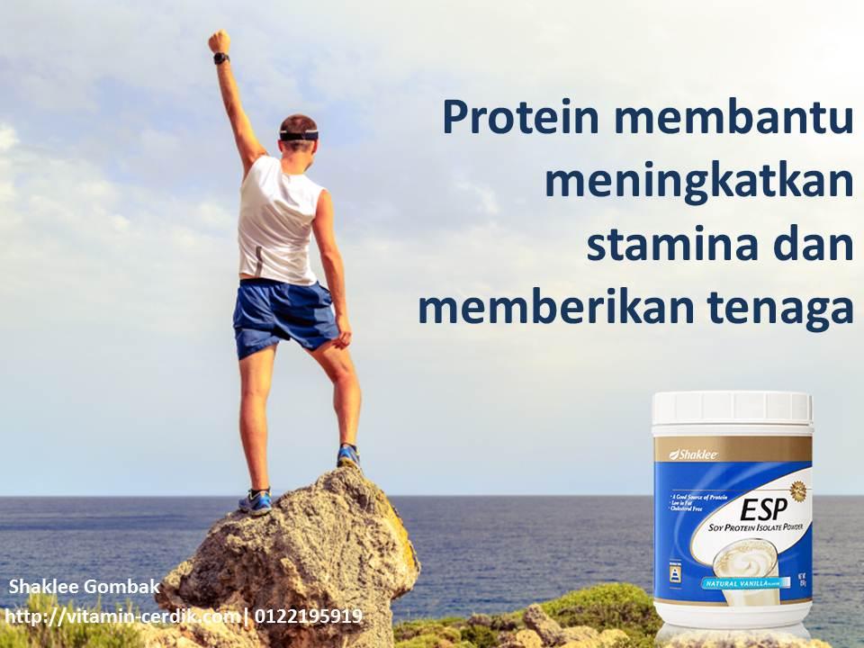 Protein sebagai sumber tenaga dan stamina