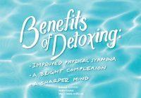 Diet Pemakanan Semasa Proses Detox