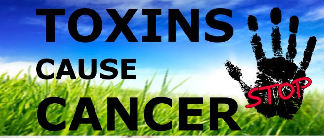 toksin penyebab kanser