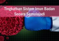 Tingkatkan sistem imun badan semulajadi