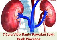 Cara vivix bantu rawatan sakit buah pinggang tahap 5