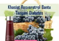 resveratrol bantu tangani diabetes kencing manis