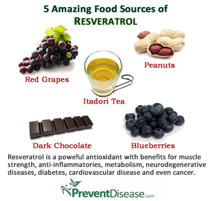 Makanan tinggi resveratrol