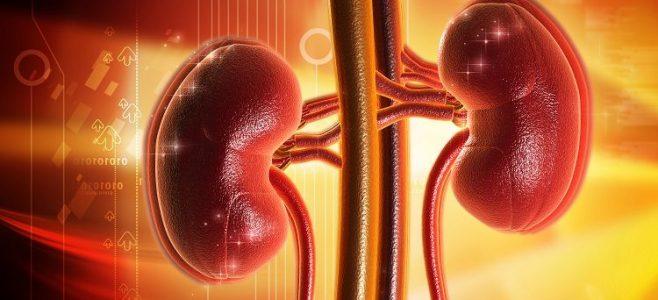 buah pinggang dan tekanan darah 1