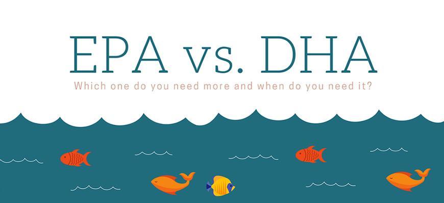 EPA vs DHA mana satu lebih penting