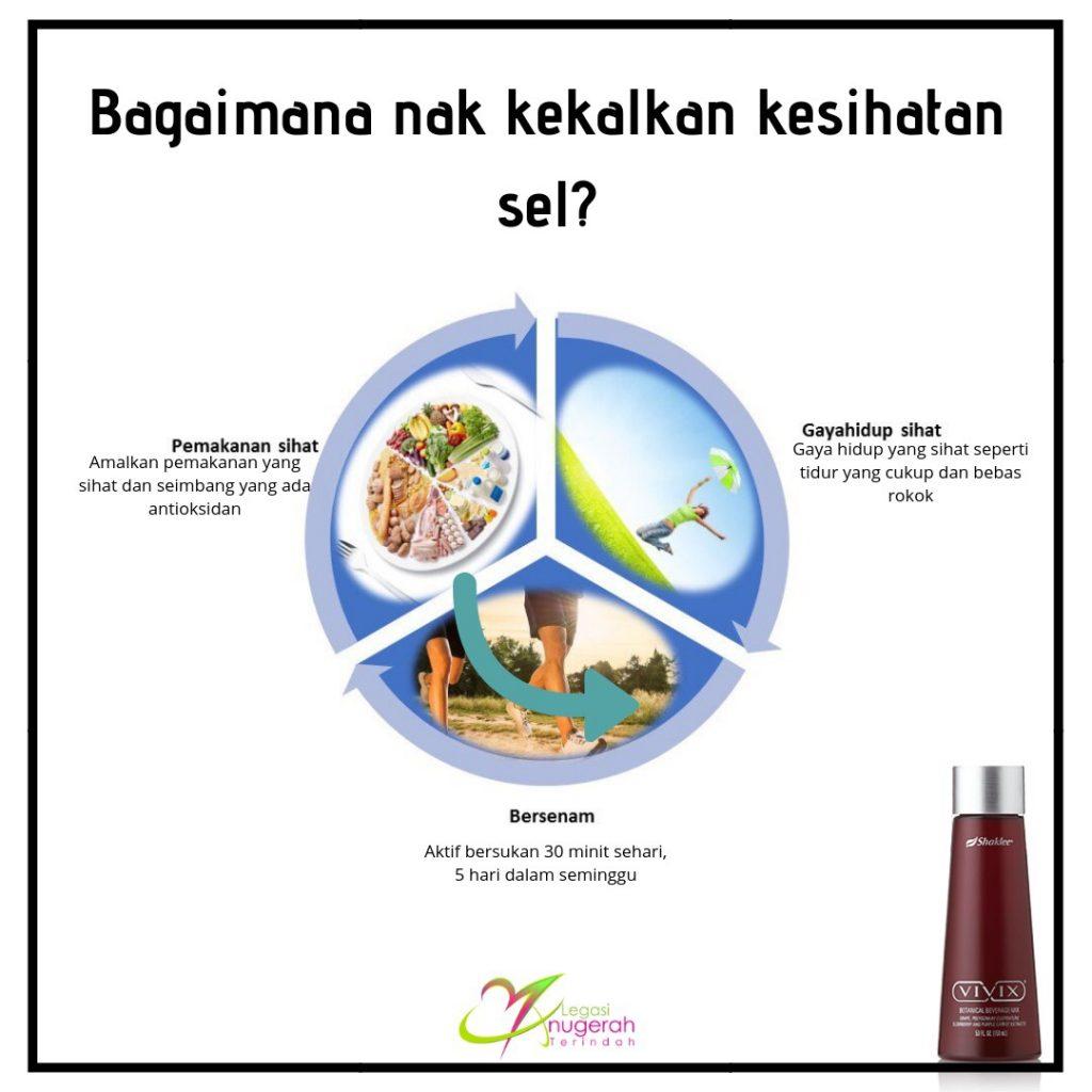 Kekalkan kesihatan sel dengan nutrisi yang sihatkan sel