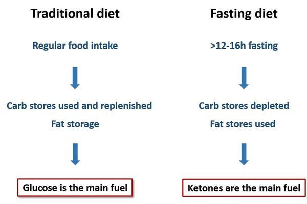 Perbezaan IF dengan diet lain ialah penggunaan tenaga