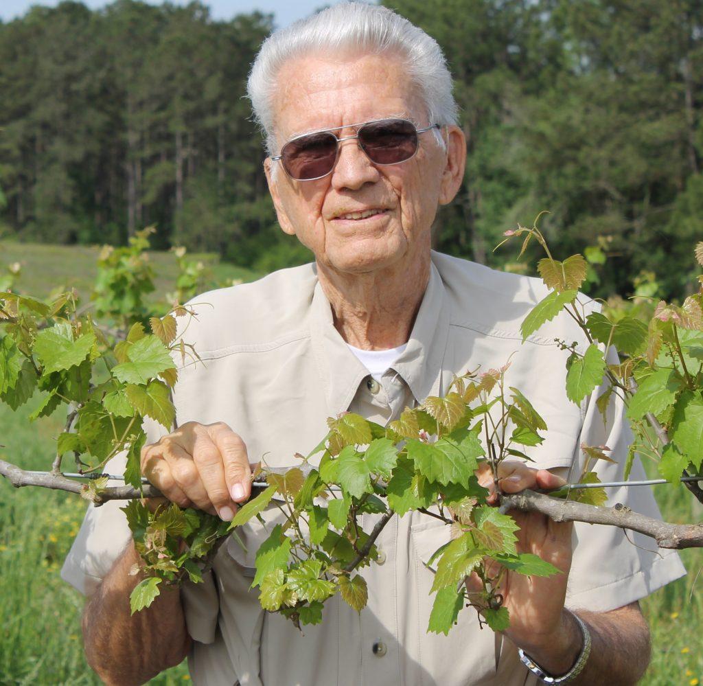 Ladang Paulk Vineyards telah beroperasi sejak tahun 1970