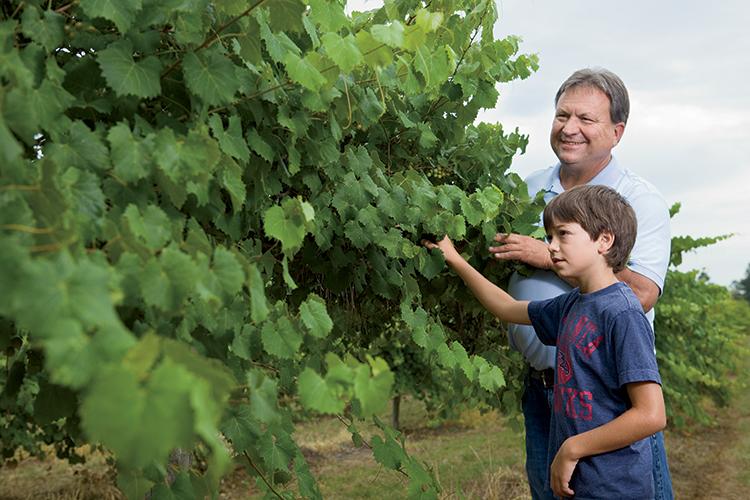 Gary Paulk bersama cucunya sedang memeriksa pokok anggur Muscadine