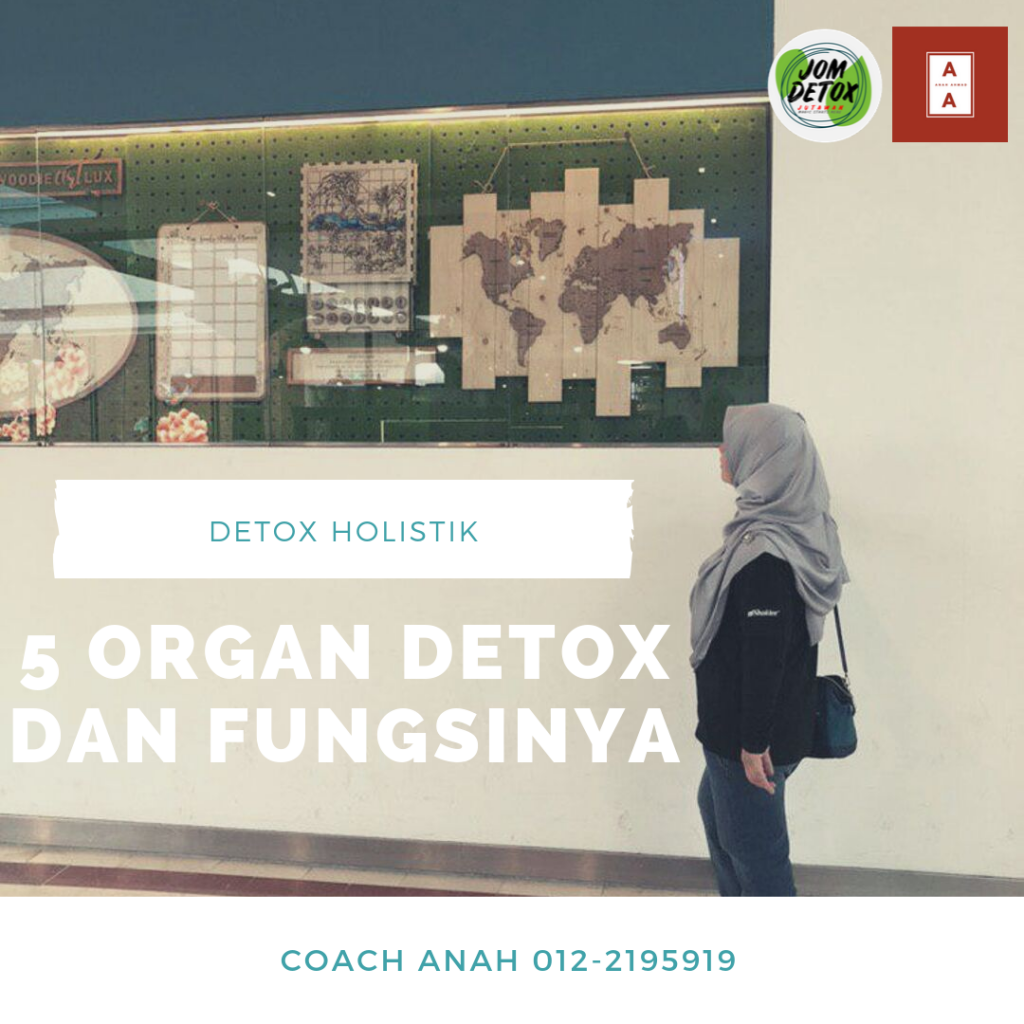 6 organ detox dan fungsinya