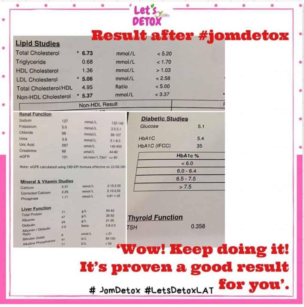 Kolesterol pun turun kepada normal dengan Jom Detox Shaklee
