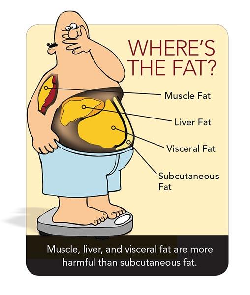 Jenis-jenis lemak yang bahaya
