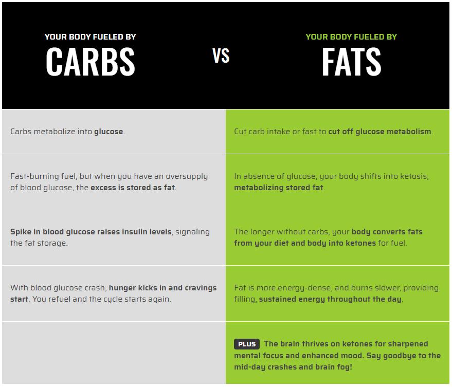 Yang mana patut jadi pilihan kita? Diet tinggi lemak atau tinggi karbohidrat?
