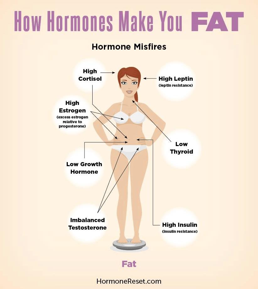 Hormon sebabkan kegemukan