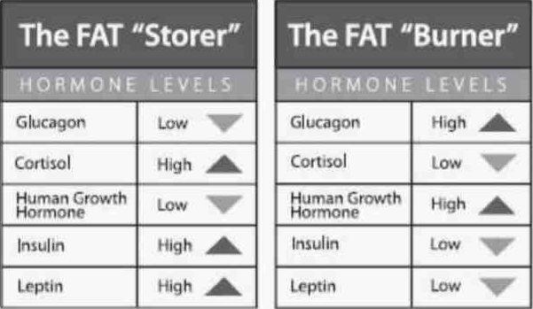 Adakah kita hidupkan hormon yang betul untuk kuruskan badan?