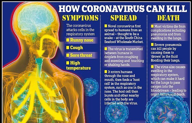 Bagaimana CoronaVirus boleh membunuh?