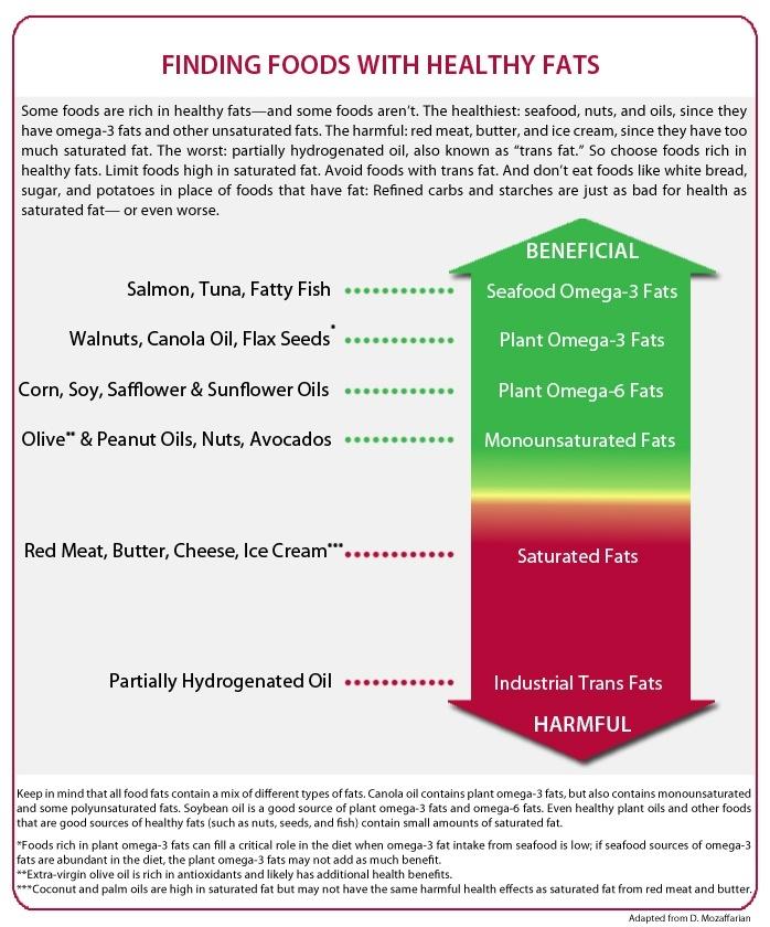 Beberapa jenis lemak yang ada dalam pemakanan kita