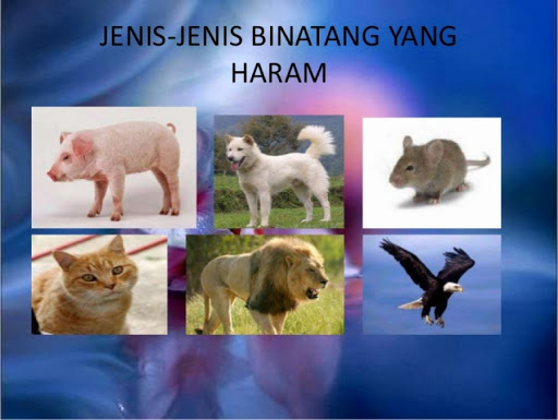 Antara jenis haiwan yang haram dimakan