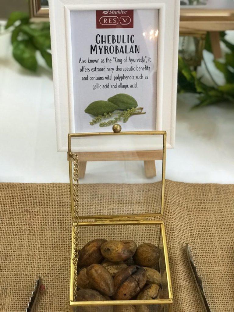 Chebulic Myrobalan