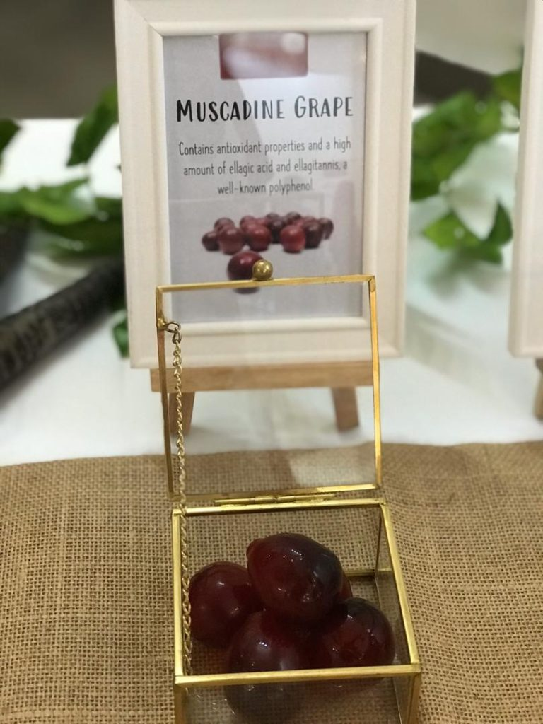 The mighty Anggur Muscadine