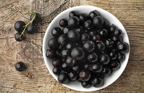 zat anggur hitam untuk cegah corona virus