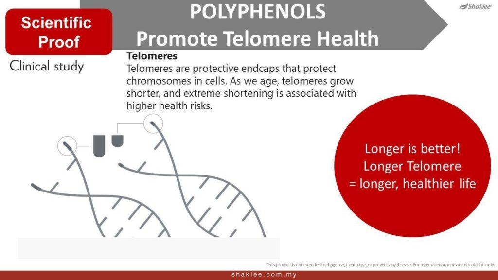 Kadar telomere yang lambat memendek adalah sangat penting untuk kesihatan