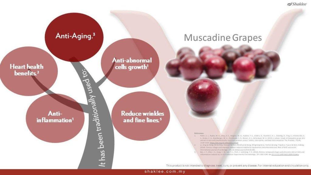 Faedah kesihatan dengan anggur muscadine