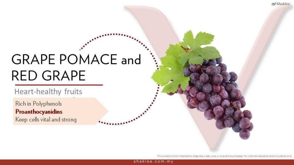 Anggur Pomace dan Anggur Merah